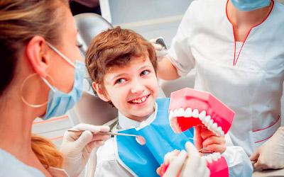 Как происходит прорезывание - Стоматология «Линия Улыбки