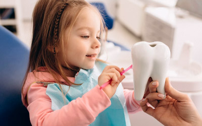 Зубная эмаль: общие характеристики и свойства - Стоматология «Линия Улыбки