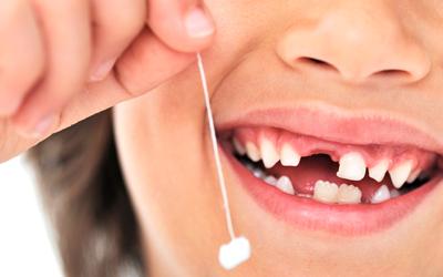 Какие молочные зубы выпадают первыми - Стоматология «Линия Улыбки»